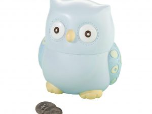 Blue Owl Bank