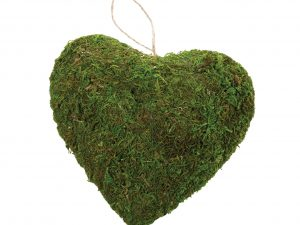 Moss Decor Hanging Heart