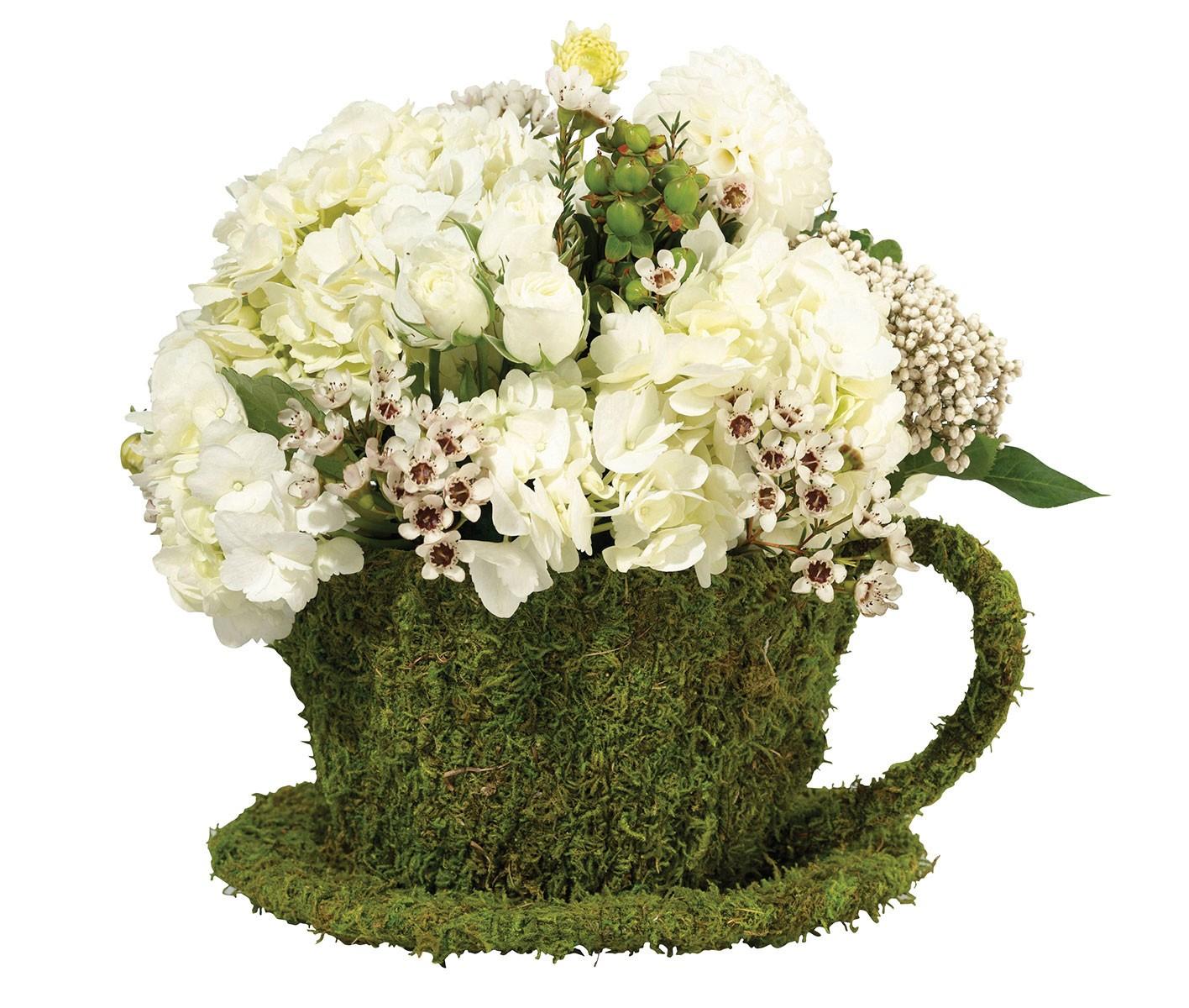 Moss Decor Teacup