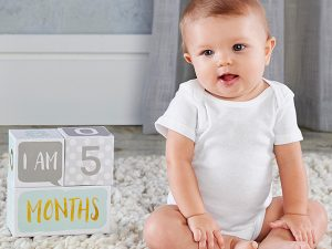 My First Milestone Baby Age Blocks