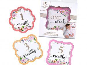 Pink Watercolor Milestone Card Set  (1-15 months)